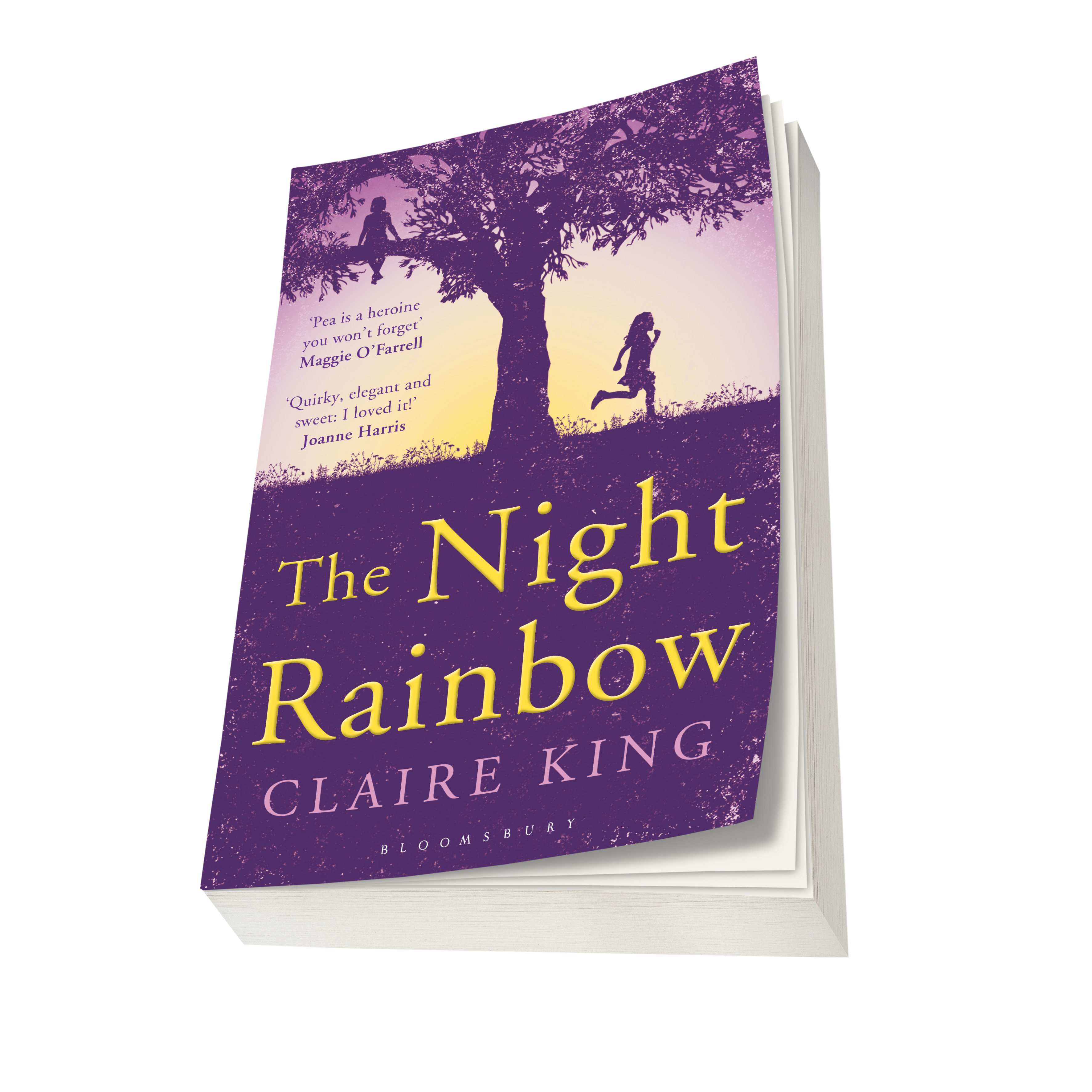 The Night Rainbow Paperback