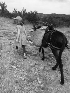 Child leading donkey